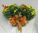 Mum Basket from Chillicothe Floral, local florist in Chillicothe, OH