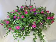 Premium Blooming Hanging Basket from Chillicothe Floral, local florist in Chillicothe, OH