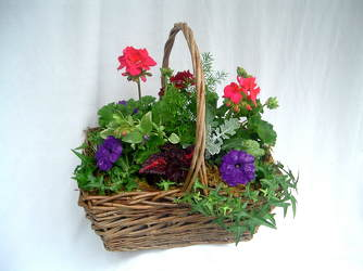 Patio Basket from Chillicothe Floral, local florist in Chillicothe, OH